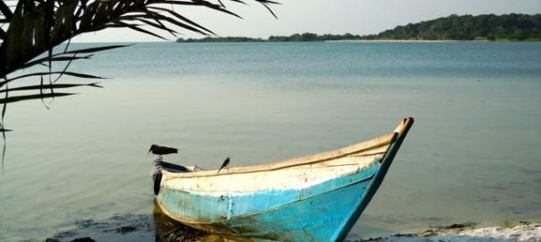 bugala-island